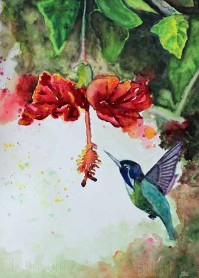 - 570 pixels -brightened version -5x7 - Hummingbird 2 copy 5