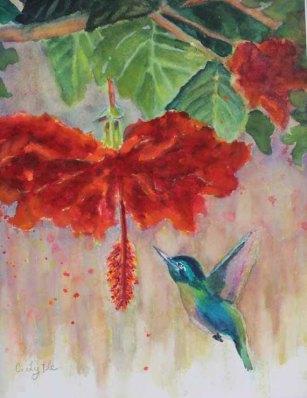 570 pixels -Hummingbird 2- 5x7