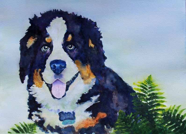 570 Pixels smart fix -Bernese Mountain Dog - Watercolor 2_edited-2 copy