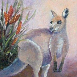 5x5- 570 pixels of Kangaroo