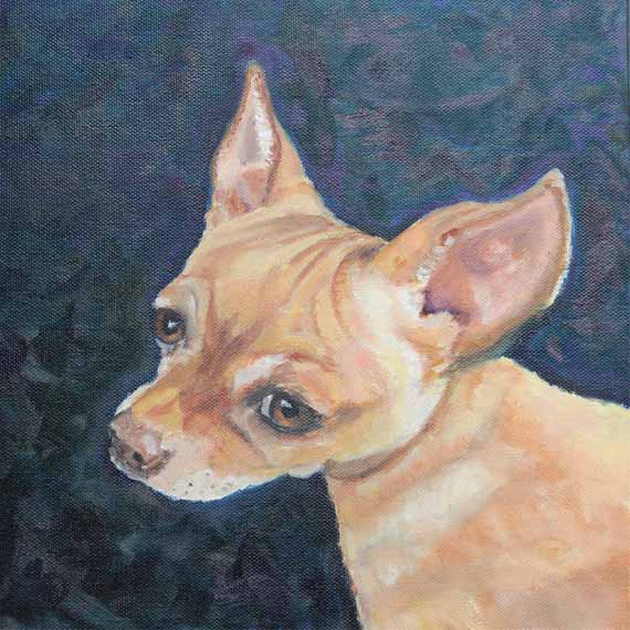 570 pixels - Chiweenie, Dog,Oil on Canvas,dog Portrait copy