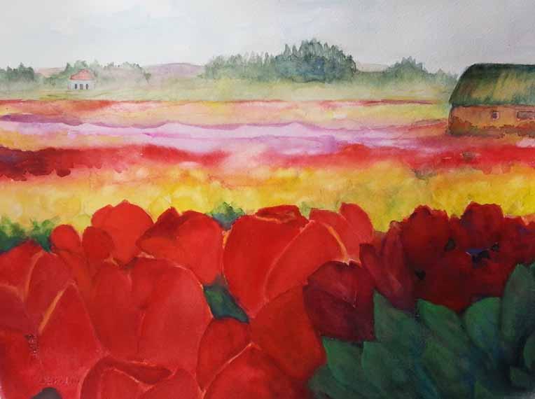 570 pixels - Skagit Tulip Splendor